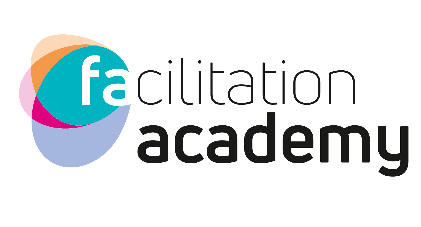 Facilitation Academy